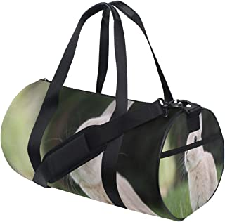 1ae81bd896fb Amazon.com: Zypr Sports Bag