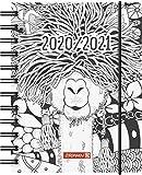 """BRUNNEN 1071750191 """"ZENart"""" Tageskalender/Schülerkalender 2020/2021, 1 Seite = 1 Tag, Sa. + So. auf einer Seite , Blattgröße 12 x 16 cm , A6 , PP-Einband"""