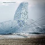 Darjeeling (feat. Abrigo De Pelos)