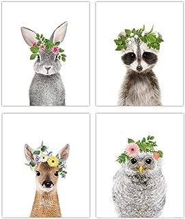 Designs by Maria Inc. Woodland Animals 8x10 Set 4 (Option 1)