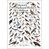 Earth Sky + Water - Peterson's Backyard Birds of the Midwest