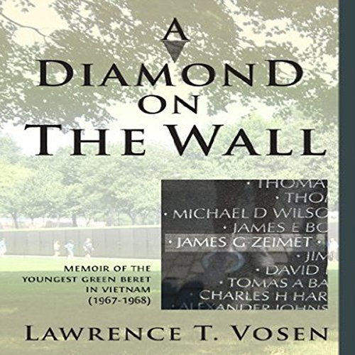A Diamond on the Wall audiobook cover art