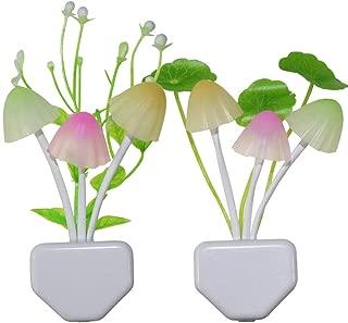 flowers of light night lamp