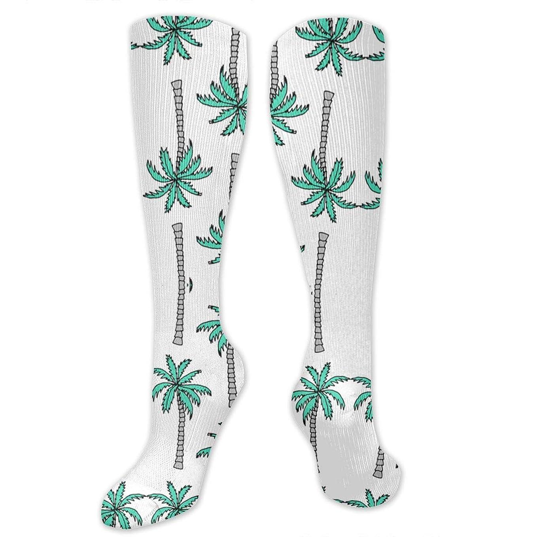 シーサイド南極平野靴下,ストッキング,野生のジョーカー,実際,秋の本質,冬必須,サマーウェア&RBXAA Palm Tree Summer Tropical Socks Women's Winter Cotton Long Tube Socks Cotton Solid & Patterned Dress Socks