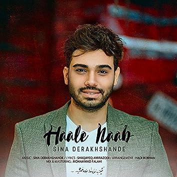 Haale Naab