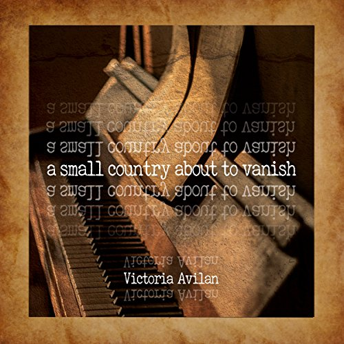 A Small Country About to Vanish audiobook cover art