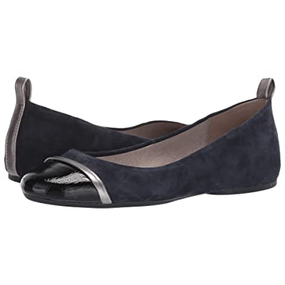 Pelle Moda Willis (Midnight Suede) Women