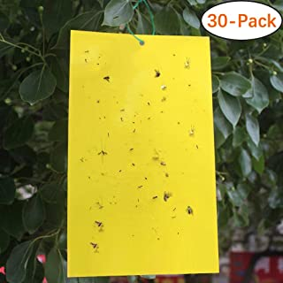 Trapro 30-Pack Yellow Sticky Fly Insect Traps for Fungus Gnats, Aphids, White Flies, Leaf Miners, Thrips, Other Flying Plant Insects - 6x8 Inches, Twist Ties Included
