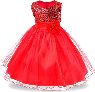 Surprise S Elegant Girl Princess Dress Girl Dress Sleeveless Ball Gown Mesh Flower Girl Dress for Wedding