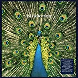 Expecting to Fly (25th Anniv.3lp Deluxe Box) [Vinilo]