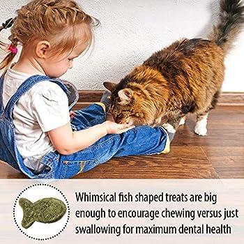 Emerald Pet Friandises dentaires pour Chats sans céréales, 85 g