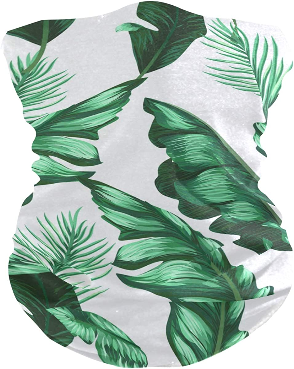 Banana LeavesFace Mask Sun UV Protection Bandana Mask Rave Neck Gaiter Balaclava Headwrap Face Cover Scarf