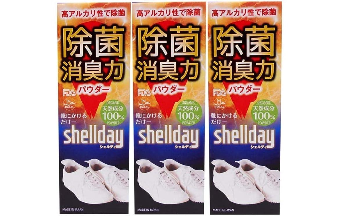 擁する一月誕生日シェルデイ 靴消臭パウダー 大容量 80g ×3 お得用 靴消臭 足の臭い対策消臭剤 100%天然素材
