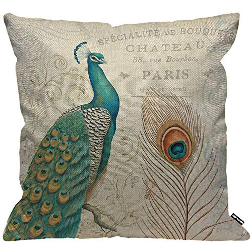 HGOD DESIGNS Cushion Cover Peacock With Feather And Letter Background Throw Pillow Cover Home Decorative for Men/Women/Boys/Girls living room Bedroom Sofa Chair 18X18 Inch Pillowcase