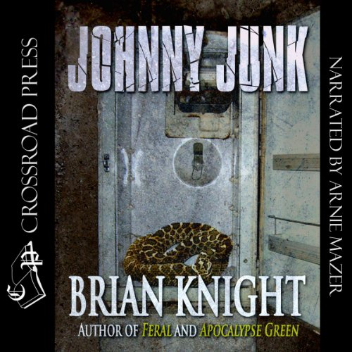 Johnny Junk audiobook cover art