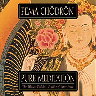 Pure Meditation                   By:                                                                                                                                 Pema Chodron                               Narrated by:                                                                                                                                 Pema Chodron                      Length: 2 hrs and 8 mins     91 ratings     Overall 4.2