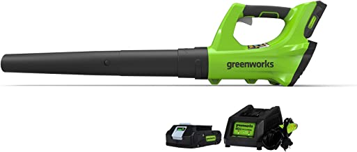 Greenworks 24V Cordless Jet Leaf Blower, 2.0Ah Battery and Charger Included 2400702