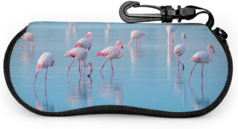 Pink Flamingo Walking On The Blue Salt Lake Sea Eyeglasses Case Sunglass Case Kids Light Portable Neoprene Zipper Soft Case Womens Sunglass Case