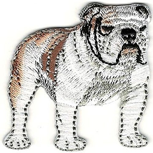 "1 3/4""x 2"" Realistic White Brown Bulldog Bull Dog Breed Embroidery Patch"