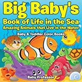 Baby Professor Books For Baby Girls Review and Comparison