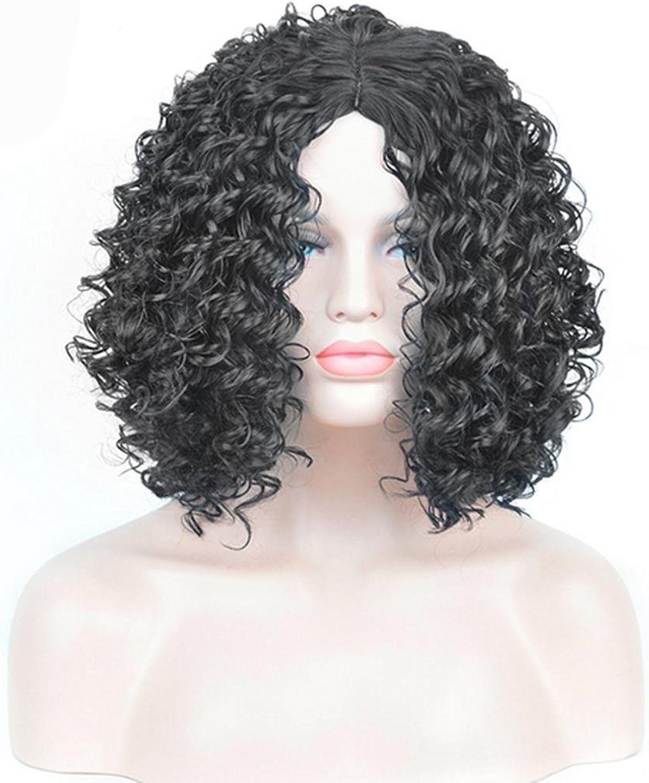 Europa und die Vereinigten Staaten afrikanischen schwarzen explosiven Kopf Perücke lange lockige Haare Faser-Sets