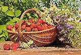 MMPTn 9x6ft Strawberry Harvest Toile De Fond Automne Jardin Bouquet De Fleurs Vidéos TV Show Wallpaper Enfants Animaux Chats Photo Shoot Accessoires