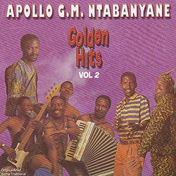 Golden Hits Vol 2