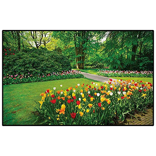 Garden Camping Rug Outdoors Rugs Garden with Tulip Flowers and Trees Springtime in Keukenhof Netherlands Europe Outdoor Carpets Patio Green and Red 3 x 5 Ft