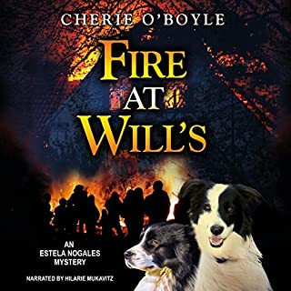 Fire at Will's cover art