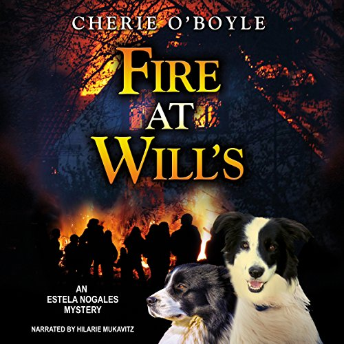 Fire at Will's audiobook cover art