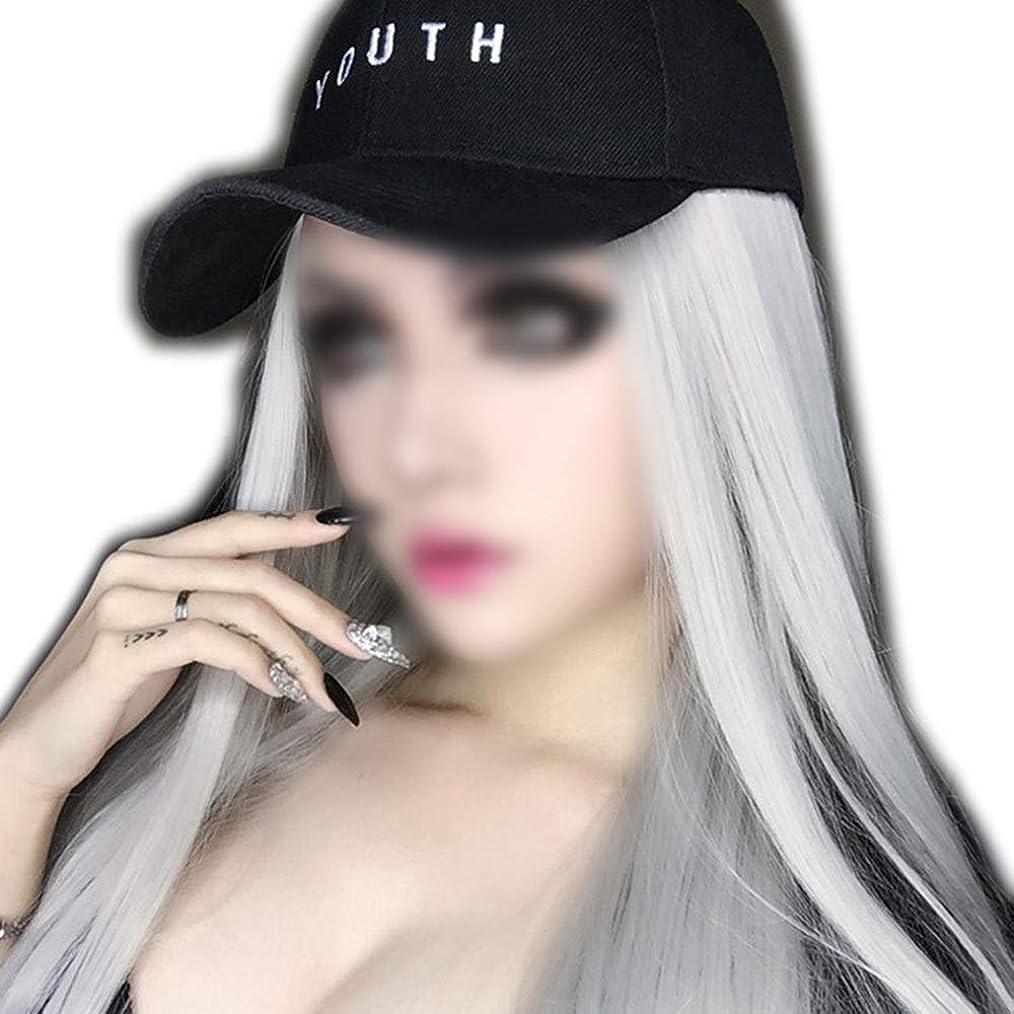 誰かお願いしますもう一度BOBIDYEE 女性のためのナチュラルストレートシルバーグレーロングウィッグソフト合成毛髪リアルな耐熱繊維パーティーウィッグ (色 : Silver gray, サイズ : 65cm)