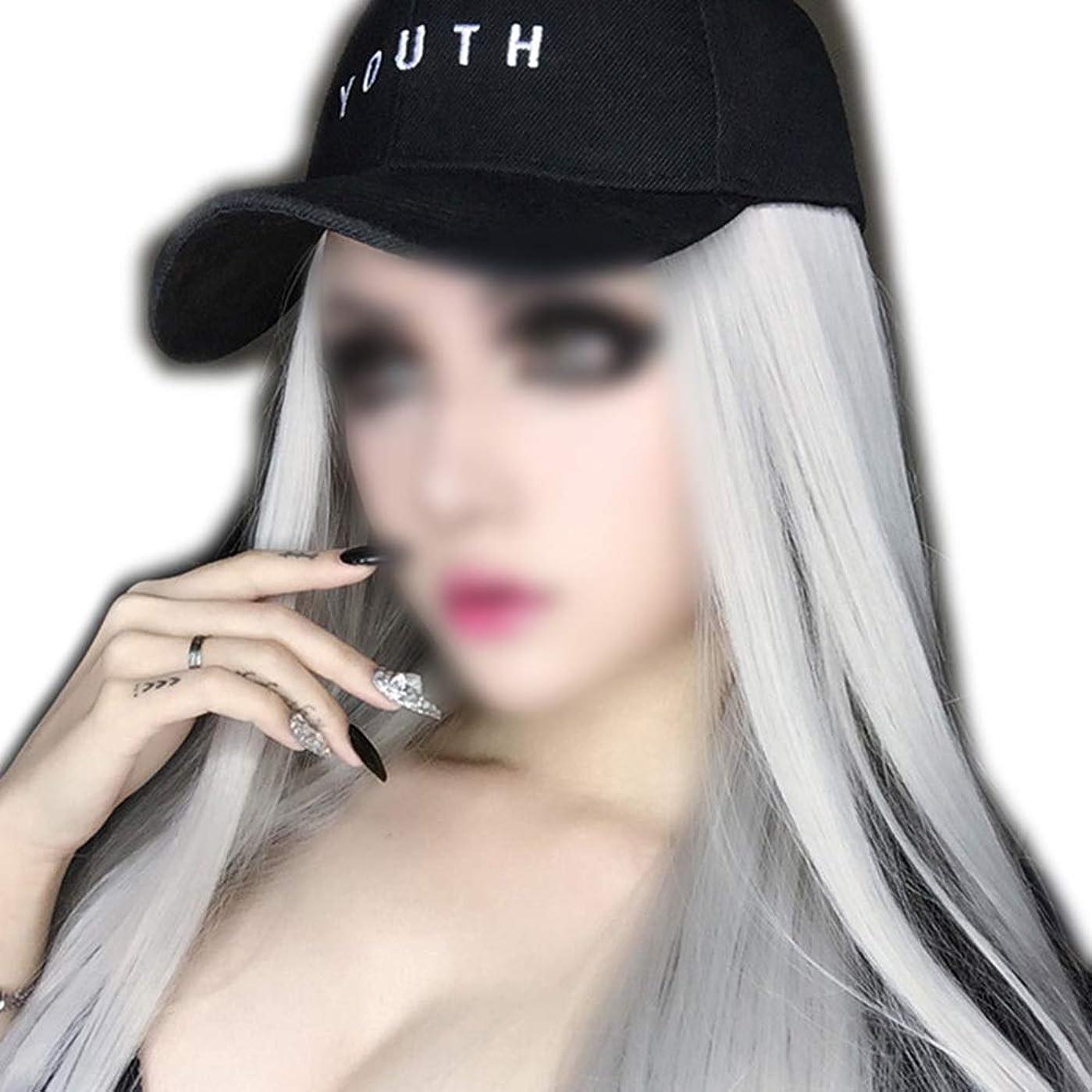 コレクション復讐加害者HOHYLLYA 女性のためのナチュラルストレートシルバーグレーロングウィッグソフト合成毛髪リアルな耐熱繊維パーティーウィッグ (色 : Silver gray, サイズ : 65cm)