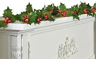 Collections Etc Holly Berry String Lights Garland with Timer