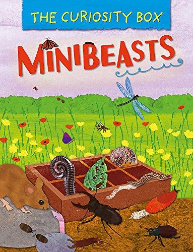 Minibeasts (The Curiosity Box, Band 3)