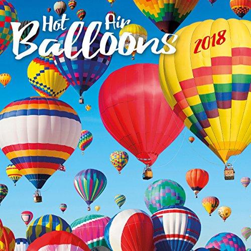 Turner Licensing Hot Air Balloons Office Wall Calendar (18998940026)