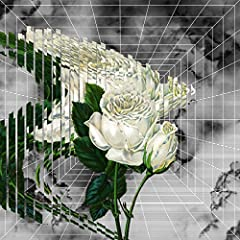 Ryohu「Flower」のCDジャケット
