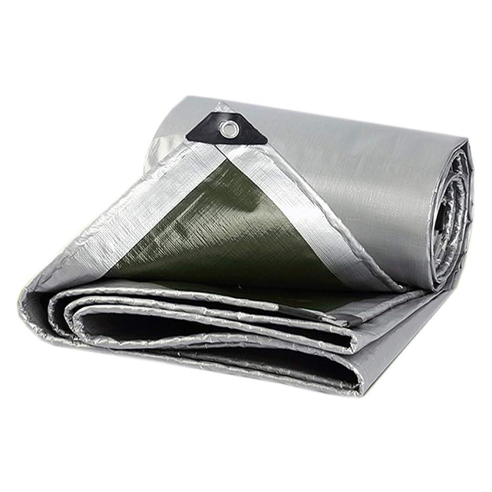 健全周術期ピッチターポリンタープテント防水布 タープPE 厚さ0.35mm 軽量防水 タープ、 オールシーズンの場合は、腐食防止の日光を当てます (Color : 2X2M)
