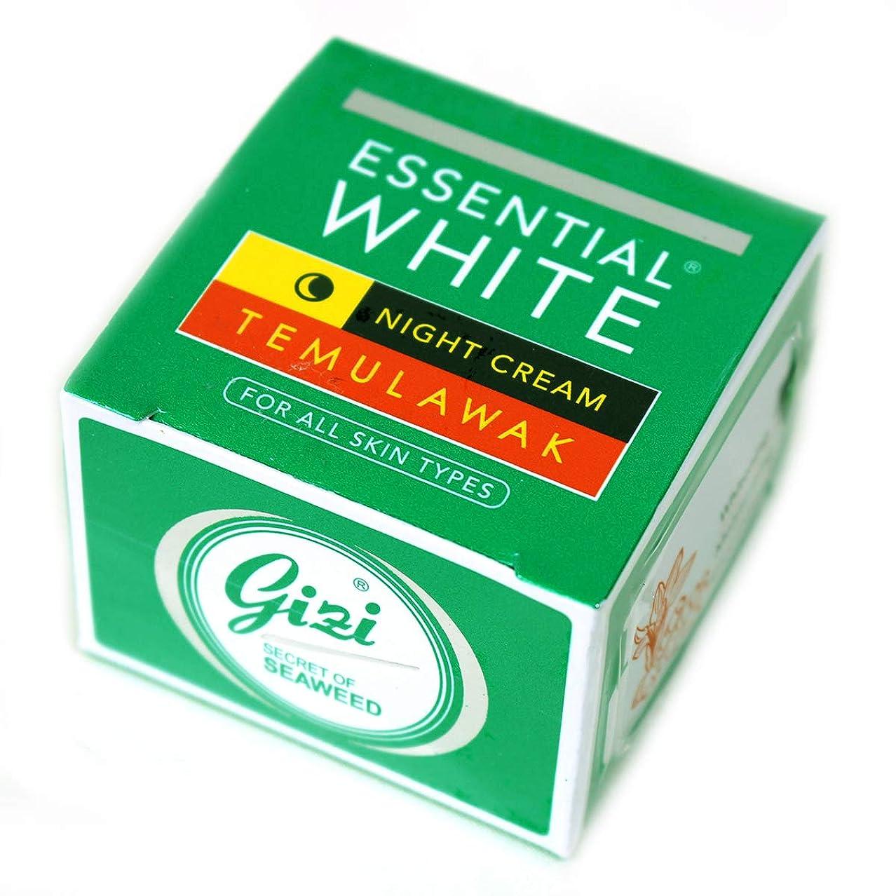 トランペットパーティション魅力ギジ gizi Essential White ナイト用スキンケアクリーム ボトルタイプ 9g テムラワク ウコン など天然成分配合 [海外直送品]