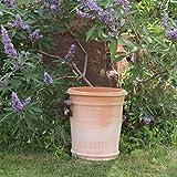 Kreta Keramik   Macetero de terracota resistente a las heladas, para plantas de interior y exterior, Canna (35 cm)