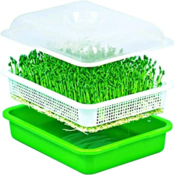 Seed Sprouter Wheatgrass Sprouting Tray BPA Free PP Sprouting Kit Big Capacity with Lid 13.4 x 9.84 x 4.2inch