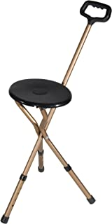 Best cane and chair combination Reviews