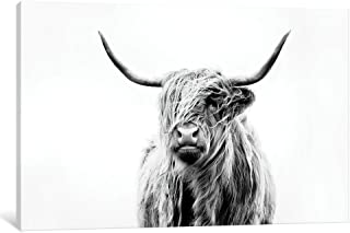 iCanvasART iCanvas Portrait of A Highland Cow Gallery Wrapped Canvas Art Print by Dorit Fuhg, 18