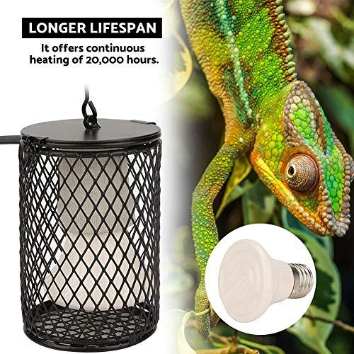 Reptile Heating Bulb Holder