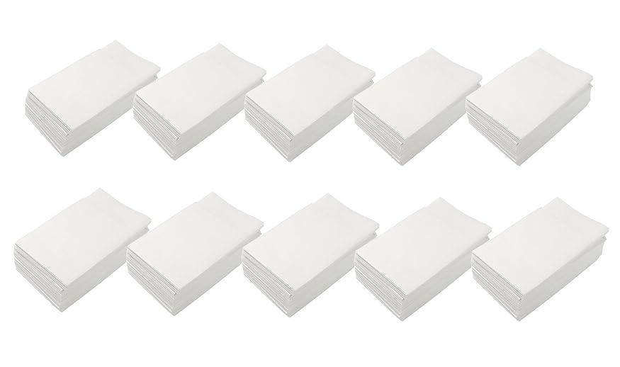 にもかかわらずハードウェア簡潔な大黒工業 『業務用』  6折 Eタイプナプキン 24.5×25cm 1000枚箱入り