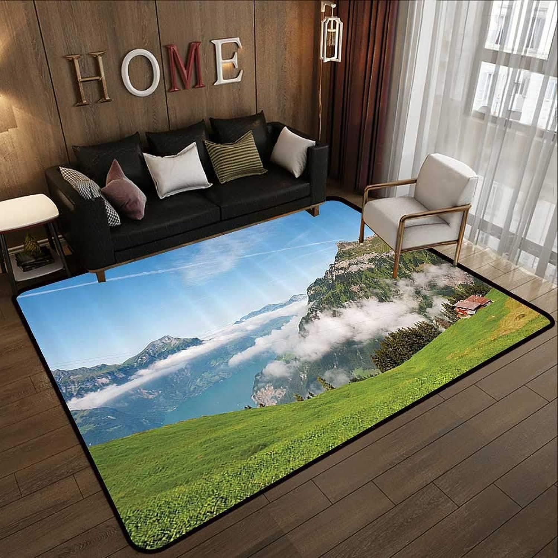 Carpet mat,Mountain,Pastoral View Switzerland Lake Lucerne Cloudy Grassland Pines Altdorf Uri,bluee Green White 47 x 59  Floor Mat Entrance Doormat