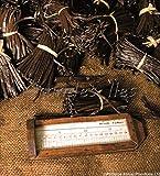 Gousse de vanille Bourbon de Madagascar 10 gousses 16 cms minimum fraîches extra non fendues poids 30g environ qualité gourmet livrées sous vide en emballage anti gaspillage pratique