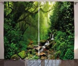 Ambesonne Nature Curtains, Woods Idyllic Forest Greenland Dreamy Mystic Fresh Tropical View, Living Room Bedroom Window Drapes 2 Panel Set, 108' X 96', Green Emerald