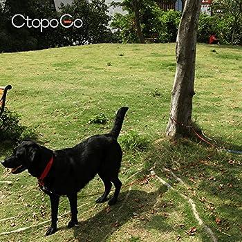 CtopoGo 10ft/16ft/33ft - Câble d'attache pour Chiens,Chien Cravate câble, câble de Cravate pour Animaux, Animaux de Compagnie Plomb pour Petit/Moyen Taille (5m, Rouge)