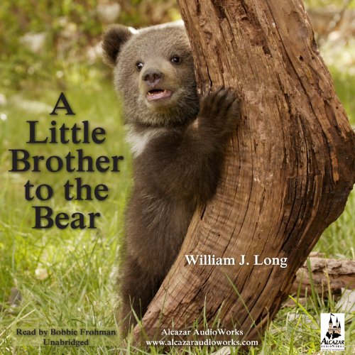 A Little Brother to the Bear cover art
