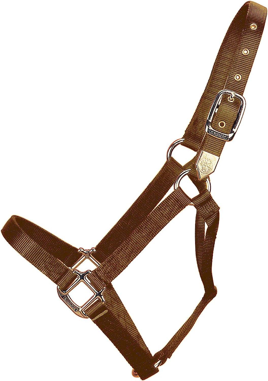 Hamilton 3D WNBR 3 4Inch Nylon Horse Halter, 200300Pound Weanling, Brown